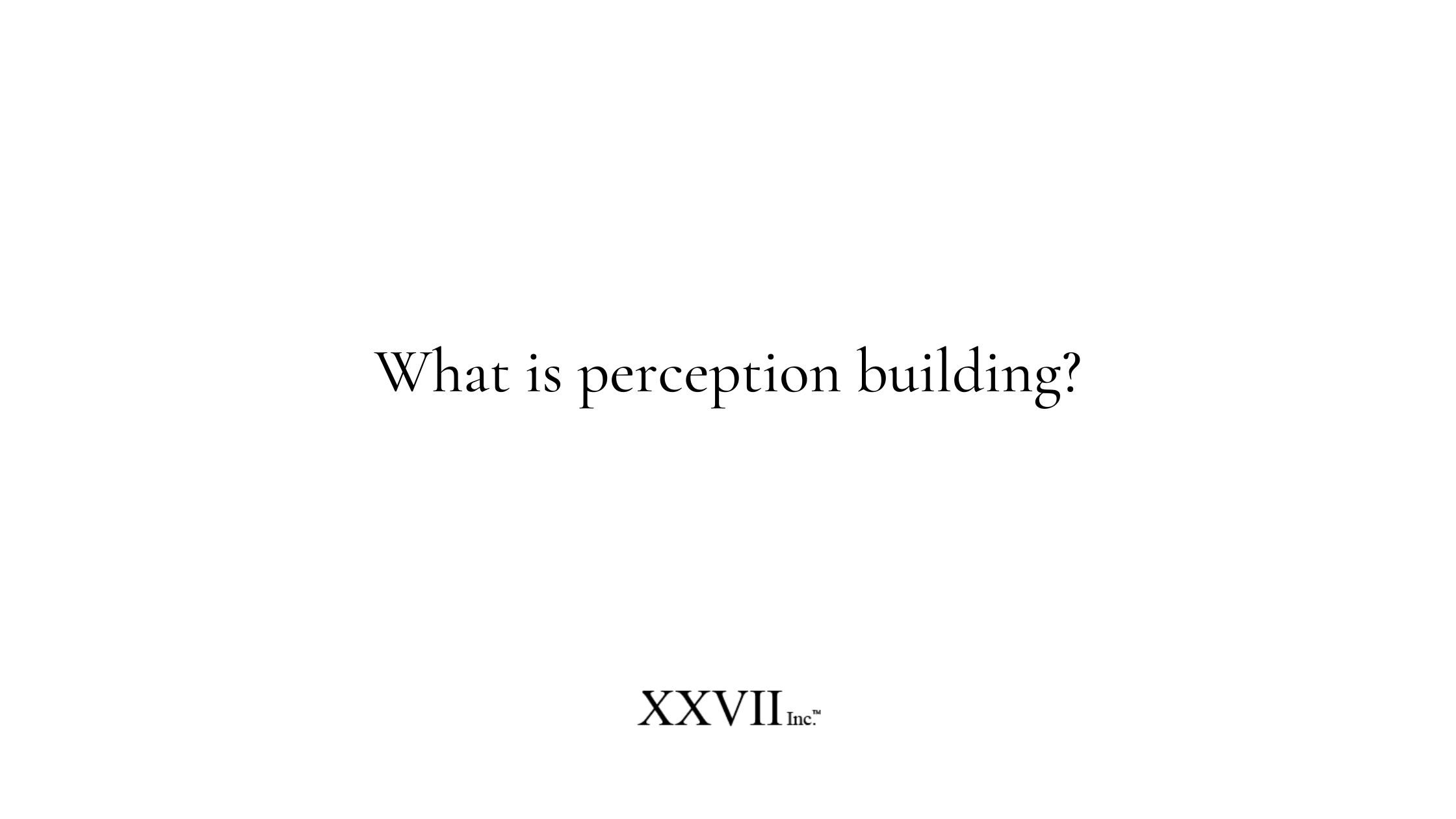 What is perception building?